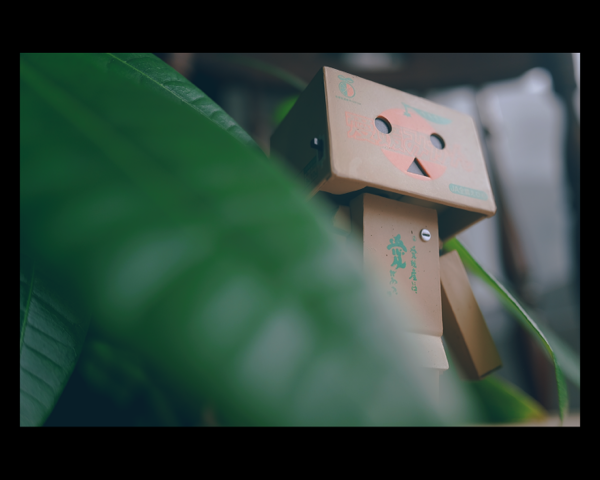 Danbo with leaves