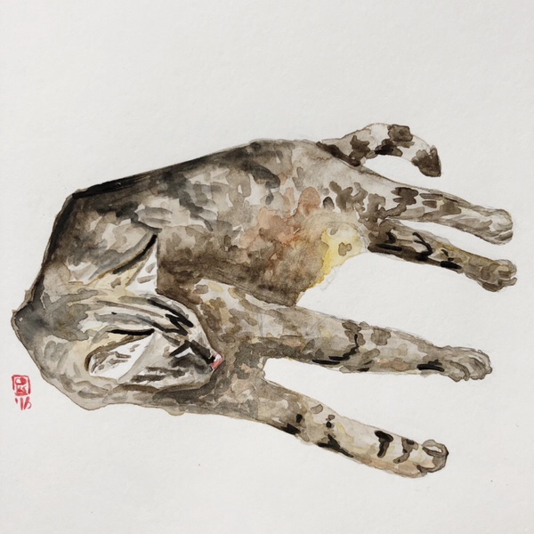 Tabby cat watercolor